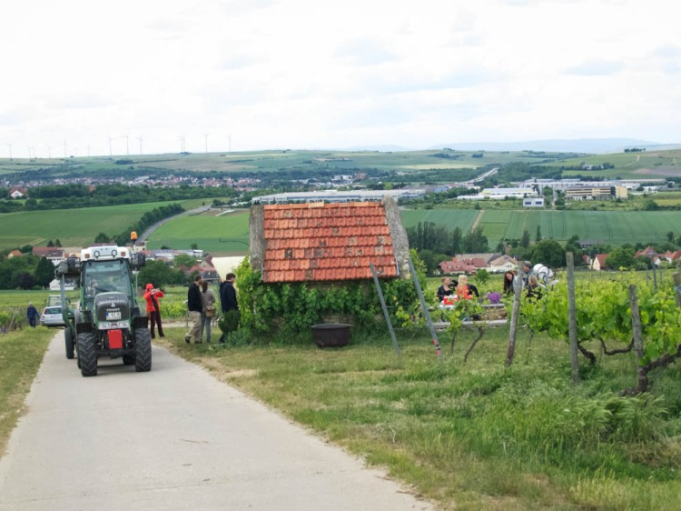 ...and then a tractor ride up to the top of the vineyards for wine tasting.