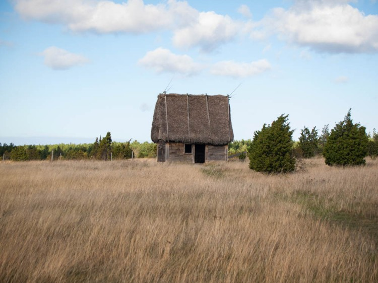 Thatched barn on Fårö Island.